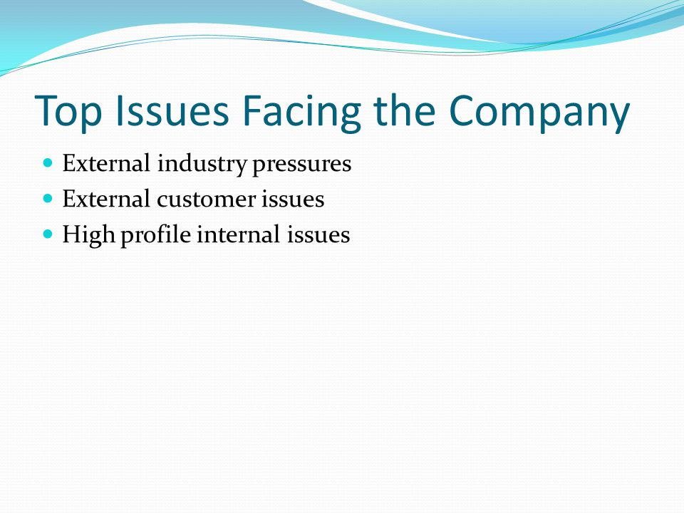 Top Issues Facing the Company External industry pressures External customer issues High profile internal issues