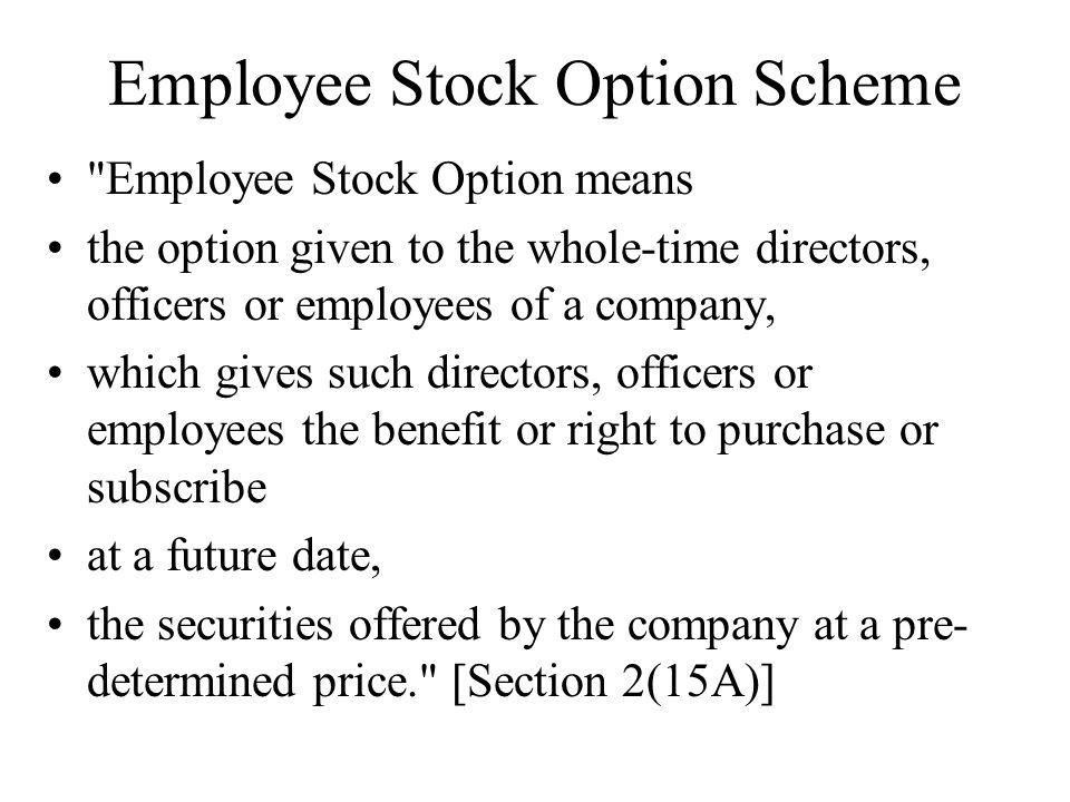 Employee Stock Option Scheme