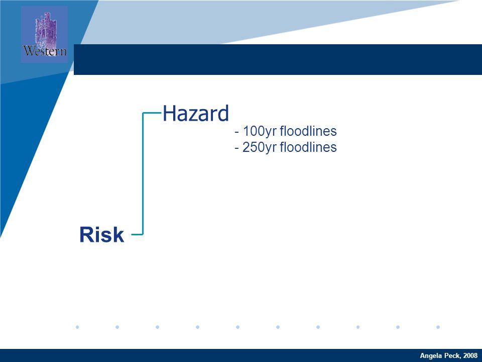 Company LOGO www.company.comAngela Peck, 2008 Hazard Risk - 100yr floodlines - 250yr floodlines