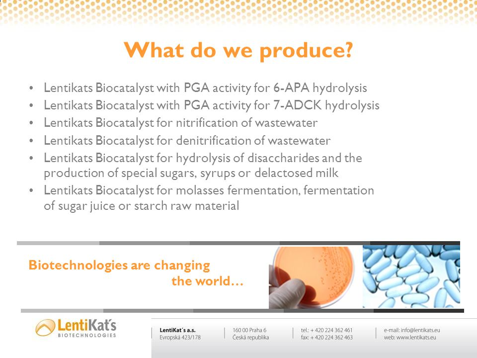 What do we produce? Lentikats Biocatalyst with PGA activity for 6-APA hydrolysis Lentikats Biocatalyst with PGA activity for 7-ADCK hydrolysis Lentika