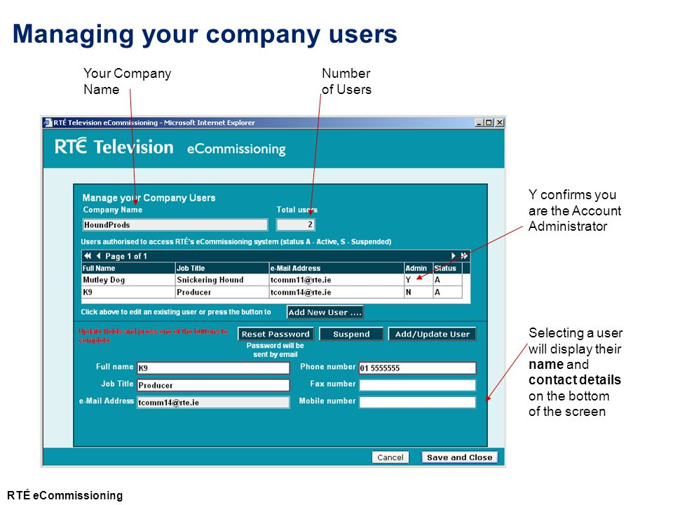 Your Company Name Number of Users Y confirms you are the Account Administrator Managing your company users Selecting a user will display their name and contact details on the bottom of the screen RTÉ eCommissioning