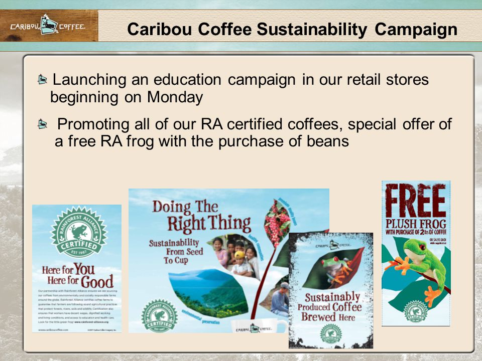Caribou Coffee Sustainability Campaign Launching an education campaign in our retail stores beginning on Monday Promoting all of our RA certified coffees, special offer of a free RA frog with the purchase of beans