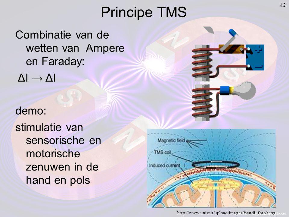 42 Principe TMS http://www.unisr.it/upload/images/Baudi_foto5.jpg Combinatie van de wetten van Ampere en Faraday: ΔI → ΔI demo: stimulatie van sensorische en motorische zenuwen in de hand en pols