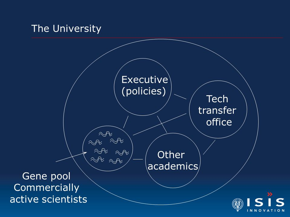 Executive (policies) Other academics Gene pool Commercially active scientists The University Tech transfer office