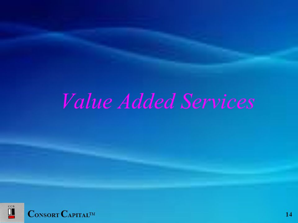 C ONSORT C APITAL TM 14 Value Added Services