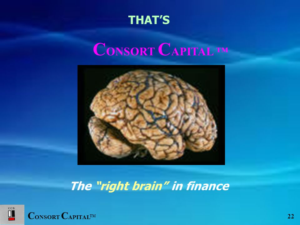 C ONSORT C APITAL TM 22 The right brain in finance THAT'S C ONSORT C APITAL ™