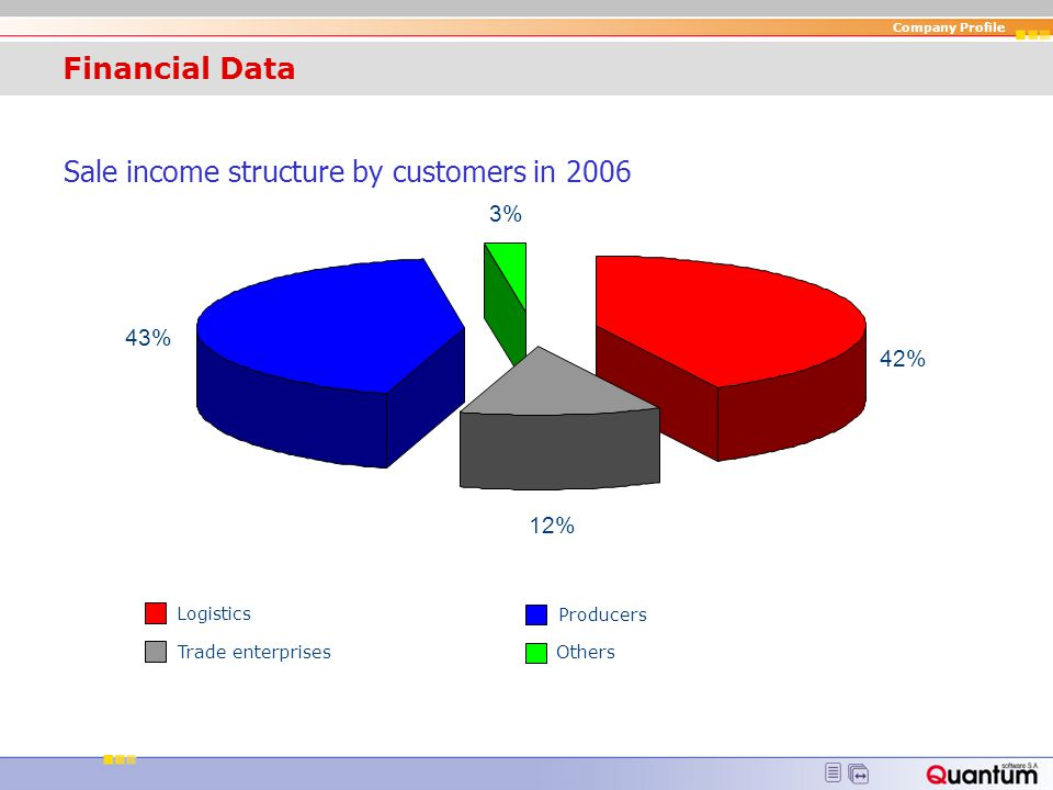 Company Profile Financial Data Sale income structure by countries in 2006