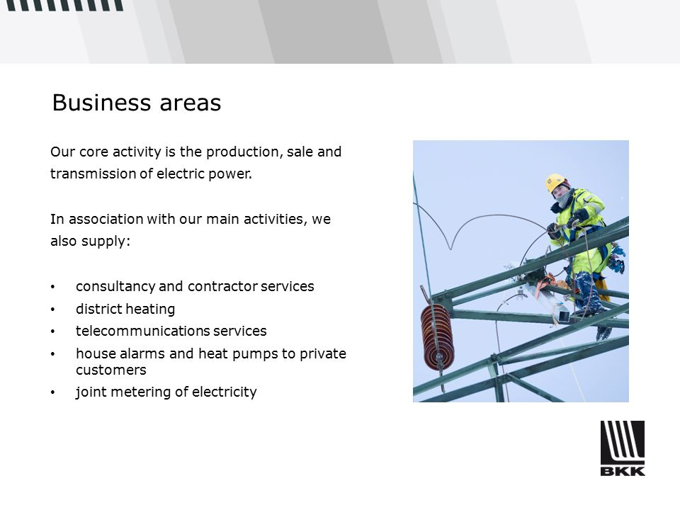 Business areas Our core activity is the production, sale and transmission of electric power. In association with our main activities, we also supply: