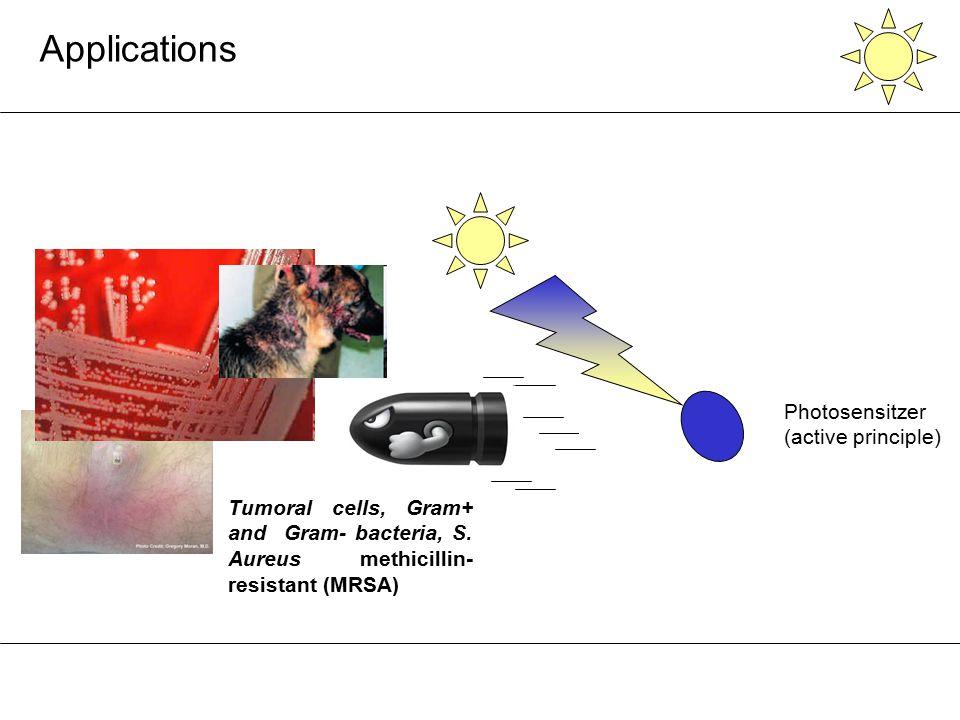 Photosensitzer (active principle) Fe 2 O 3 Tumoral cells, Gram+ and Gram- bacteria, S. Aureus methicillin- resistant (MRSA) Applications