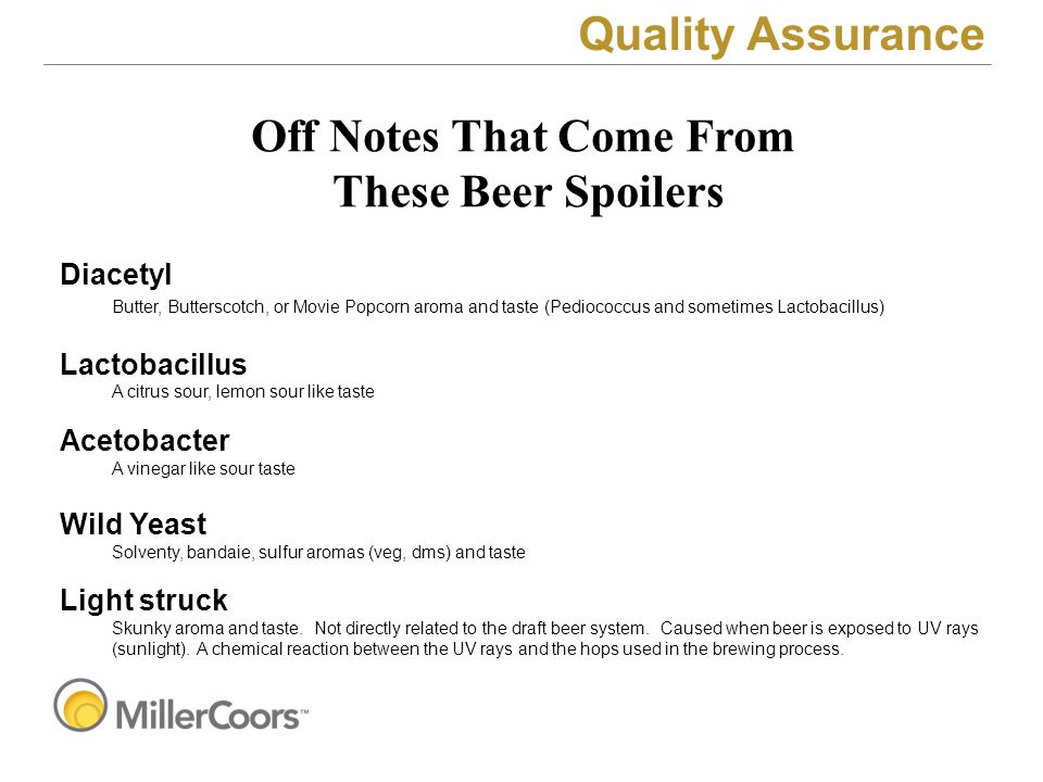 Quality Assurance Diacetyl Butter, Butterscotch, or Movie Popcorn aroma and taste (Pediococcus and sometimes Lactobacillus) Lactobacillus A citrus sou