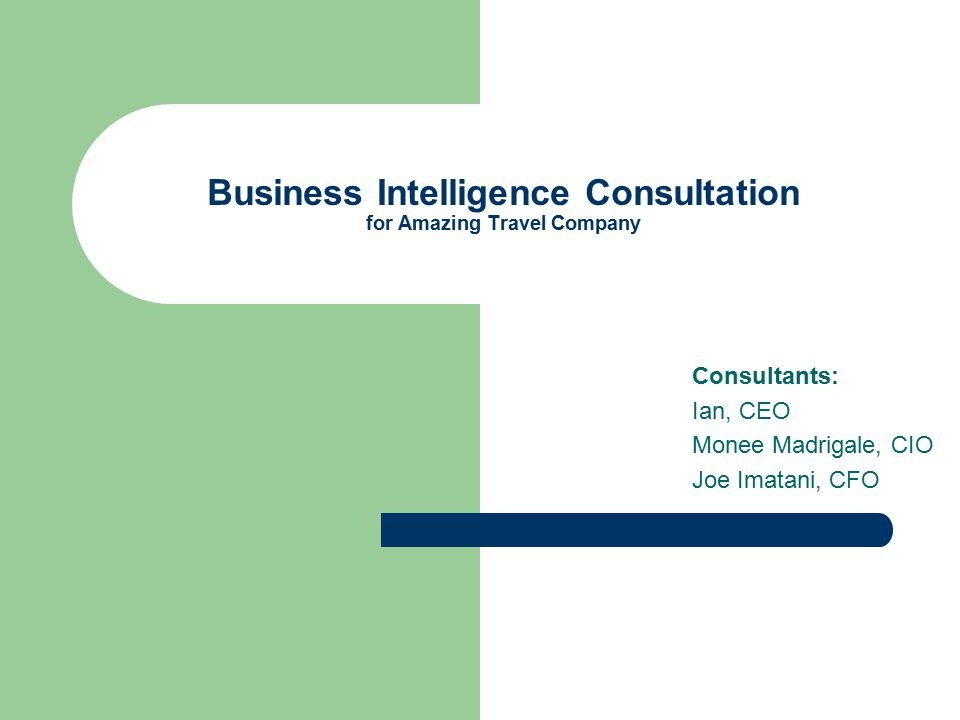 Business Intelligence Consultation for Amazing Travel Company Consultants: Ian, CEO Monee Madrigale, CIO Joe Imatani, CFO