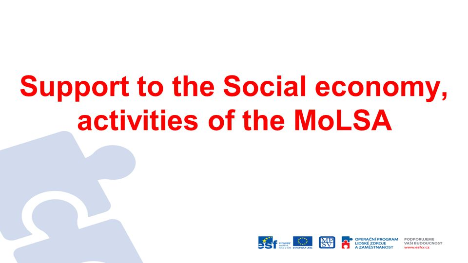 Support to the Social economy, activities of the MoLSA