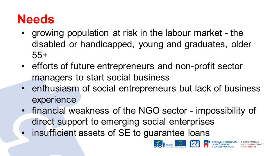 Needs growing population at risk in the labour market - the disabled or handicapped, young and graduates, older 55+ efforts of future entrepreneurs and non-profit sector managers to start social business enthusiasm of social entrepreneurs but lack of business experience financial weakness of the NGO sector - impossibility of direct support to emerging social enterprises insufficient assets of SE to guarantee loans