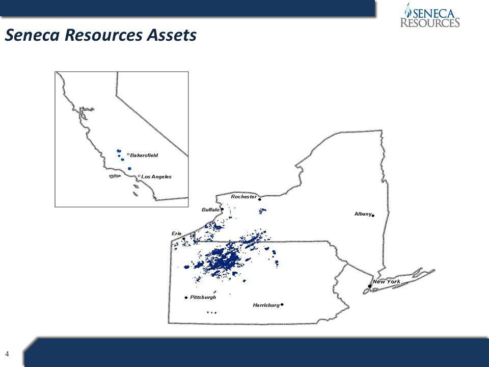 4 Seneca Resources Assets