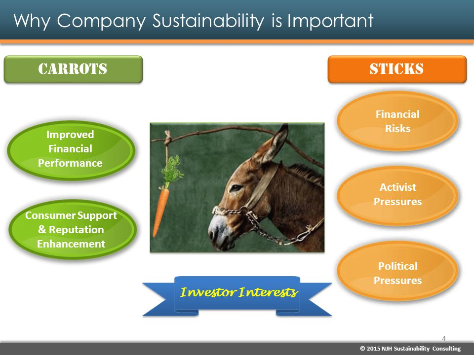 © 2015 NJH Sustainability Consulting Why Company Sustainability is Important Sustainability Efforts Lead to Better Financial Performance & Returns Actively managing and planning for climate change => 18% higher ROI Investing in carbon reductions => 50% lower volatility of earnings over the past decade & 21% stronger dividends Investing across U.S.