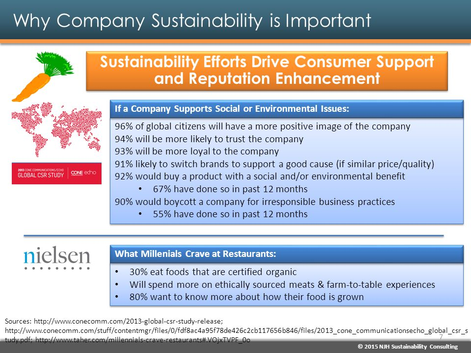 © 2015 NJH Sustainability Consulting Why Company Sustainability is Important Environment Is an Economic Threat Sources: Global Risk Report (2015 Edition), World Economic Forum, Jan.