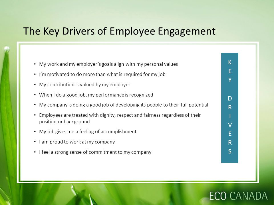 The Key Drivers of Employee Engagement My work and my employer's goals align with my personal values I'm motivated to do more than what is required fo