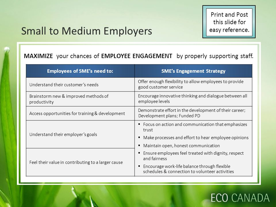 Small to Medium Employers Employees of SME's need to:SME's Engagement Strategy Understand their customer's needs Offer enough flexibility to allow emp