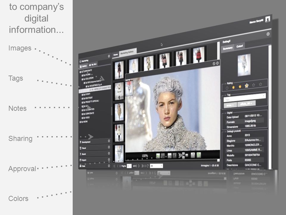 Images Tags Notes Sharing Approval Colors to company's digital information...