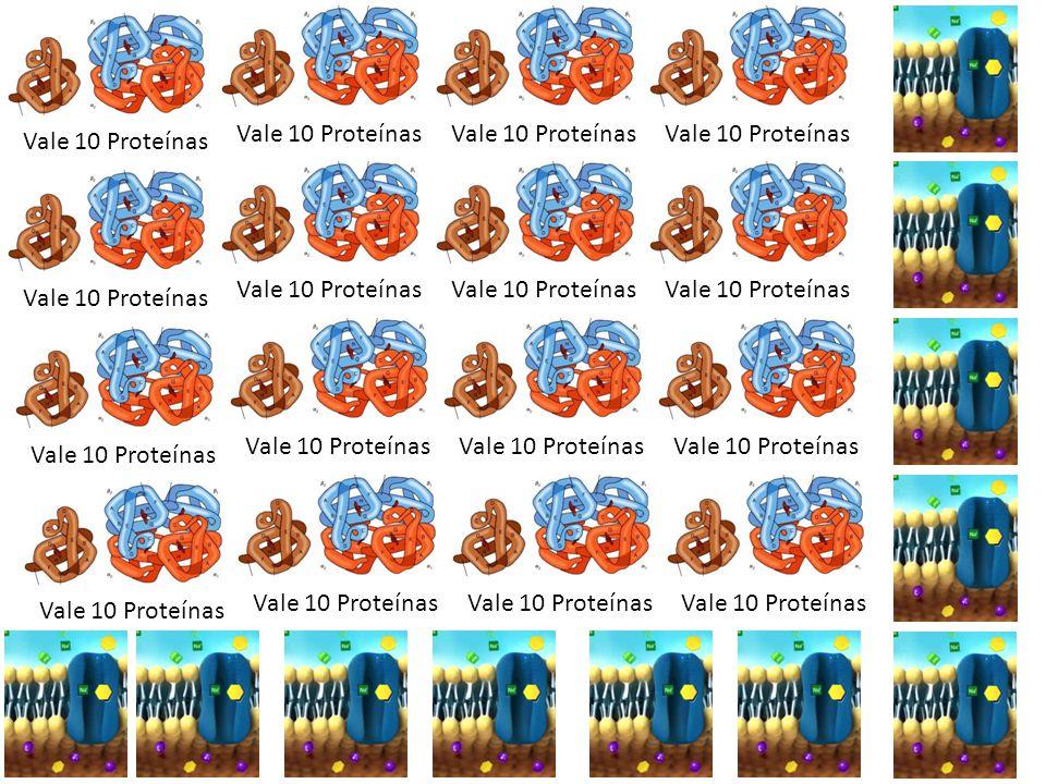 Vale 10 Proteínas
