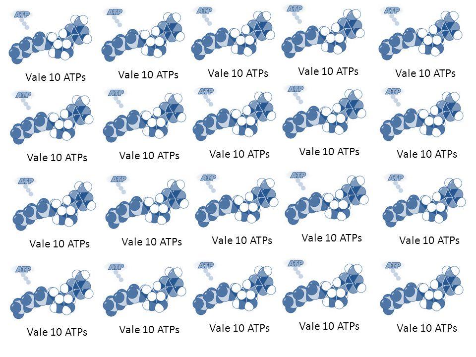 Vale 10 ATPs
