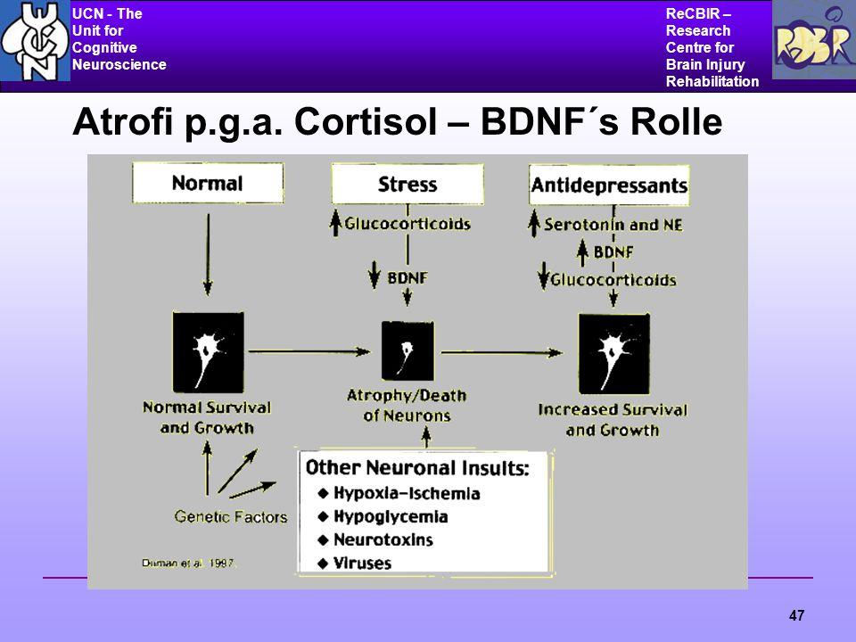 UCN - The Unit for Cognitive Neuroscience ReCBIR – Research Centre for Brain Injury Rehabilitation 47 Atrofi p.g.a.