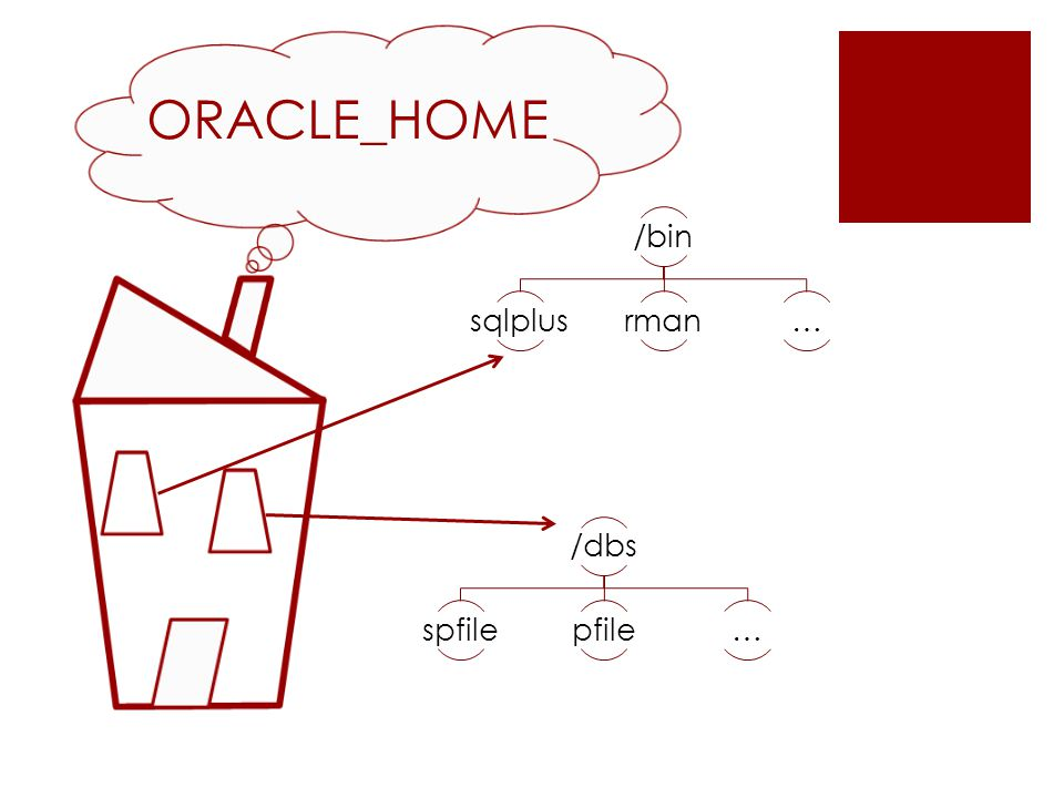 $ORACLE_HOME/dbs/spfile$ORACLE_SID.ora /dbs$ORACLE_SID$ORACLE_HOME sqlplus / as sysdba Connected to an idle instance.