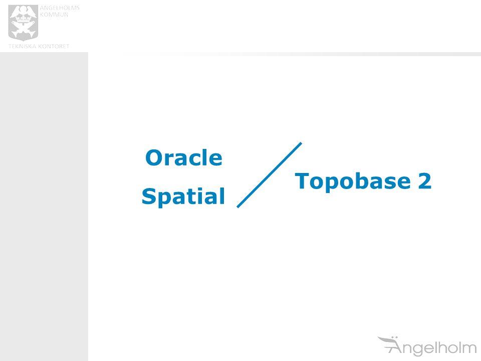 Oracle Spatial Topobase 2
