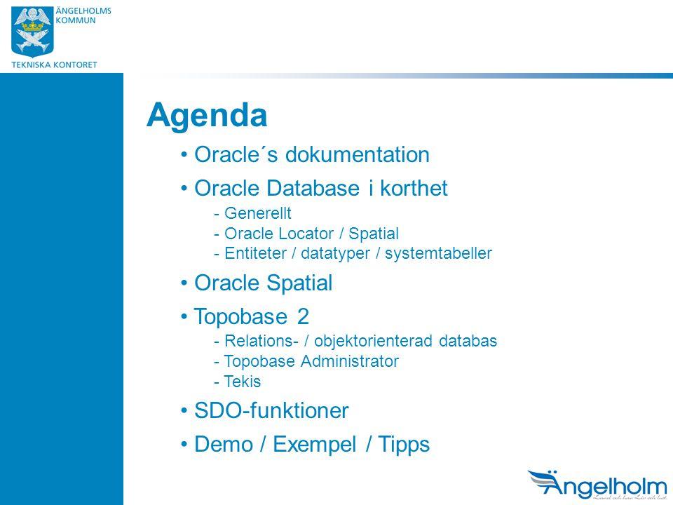 Agenda Oracle´s dokumentation Oracle Database i korthet - Generellt - Oracle Locator / Spatial - Entiteter / datatyper / systemtabeller Oracle Spatial Topobase 2 - Relations- / objektorienterad databas - Topobase Administrator - Tekis SDO-funktioner Demo / Exempel / Tipps