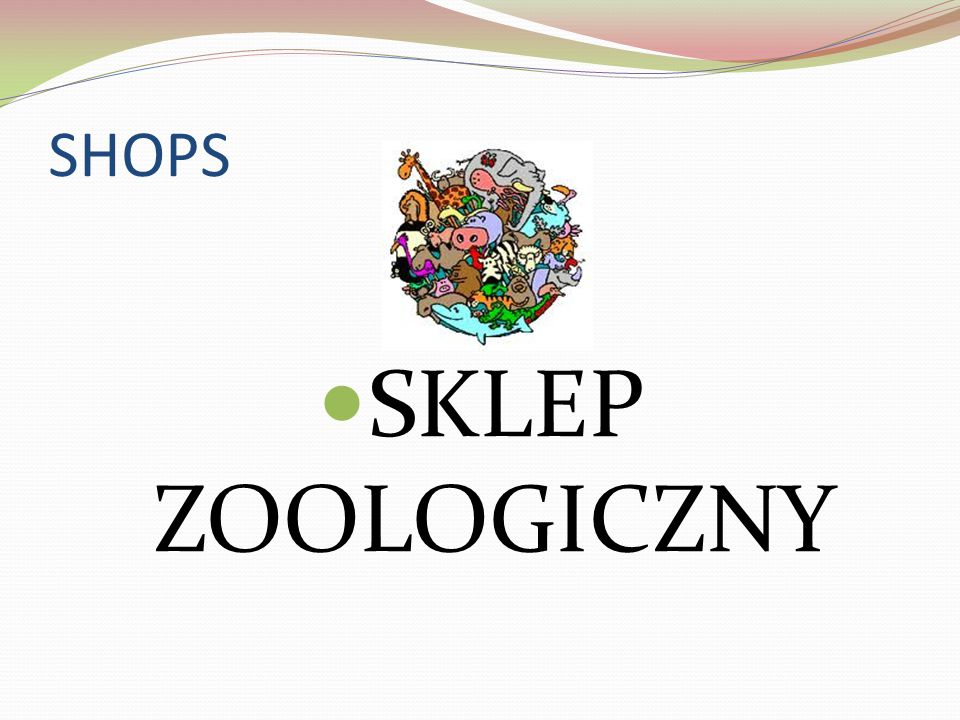 SHOPS SKLEP ZOOLOGICZNY