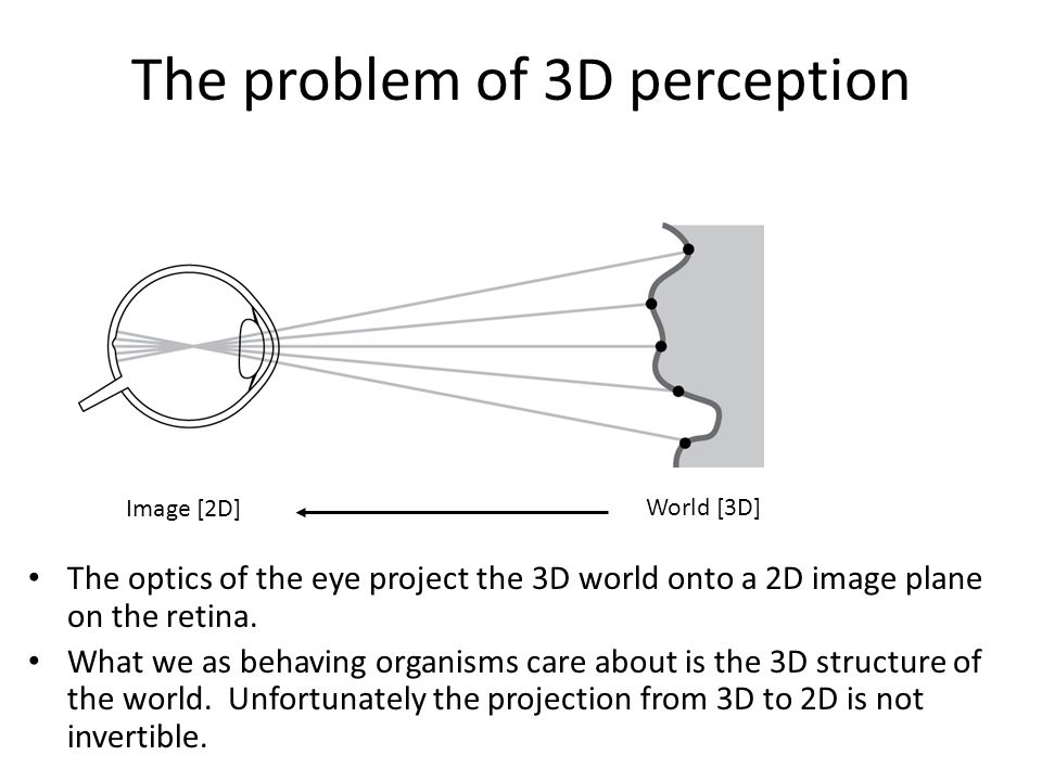 Multiple surfaces are consistent with any given image, so 3D shape perception is fundamentally ambiguous It is an inference from incomplete information The problem of 3D perception