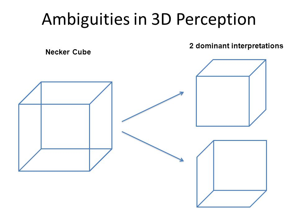 Ambiguities in 3D Perception 2 dominant interpretations Only a handful of legal interpretations are generally experienced.