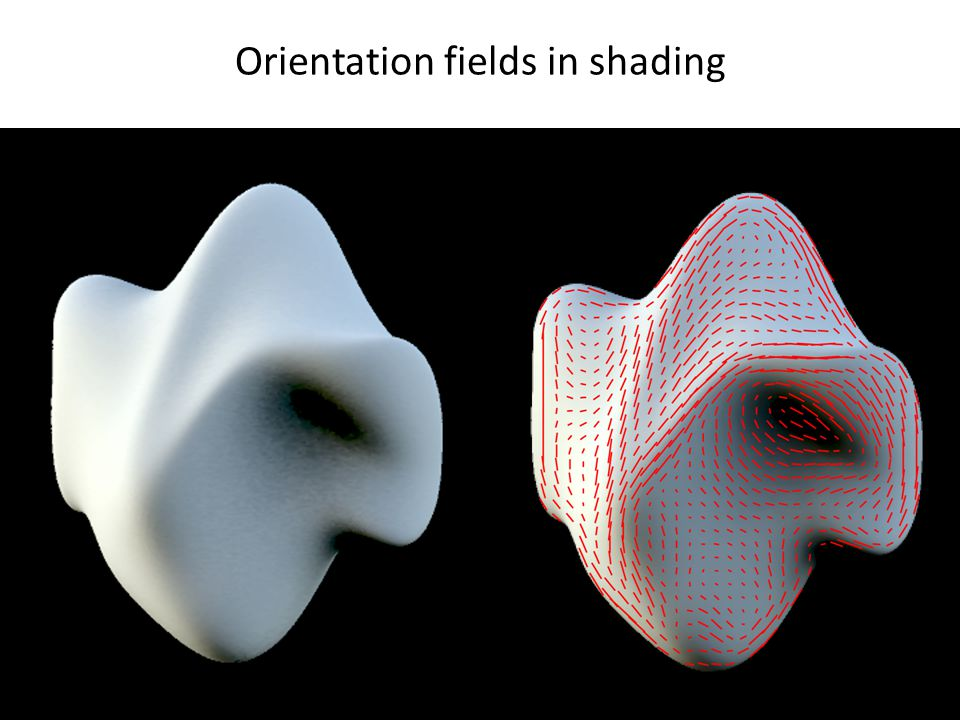 Orientation fields in shading