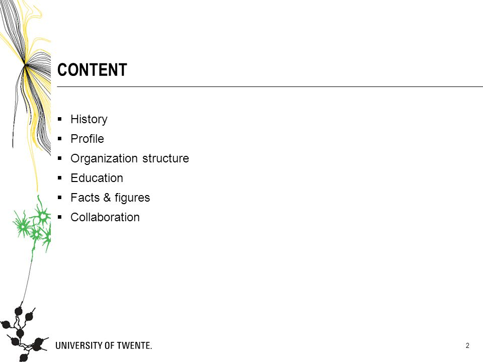 CONTENT  History  Profile  Organization structure  Education  Facts & figures  Collaboration 2