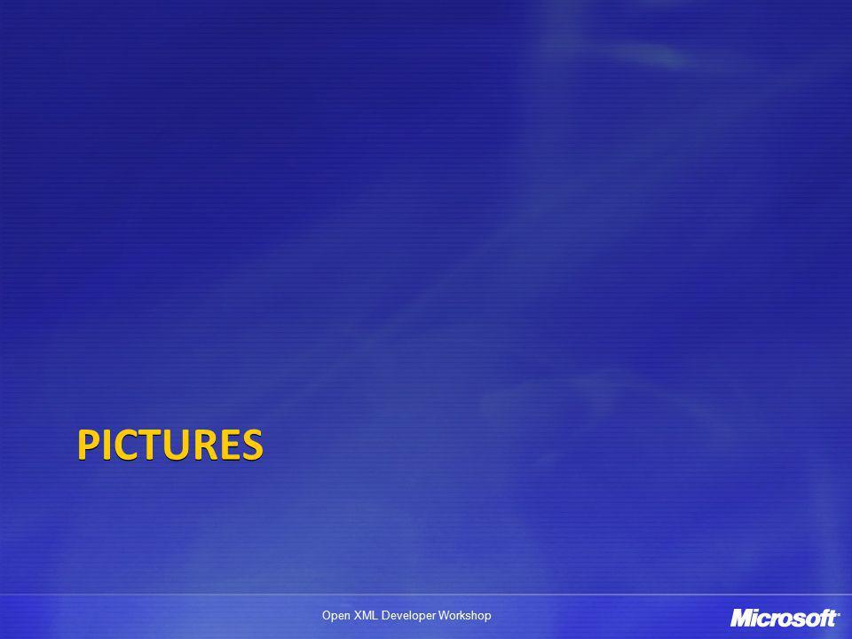 Open XML Developer Workshop PICTURES