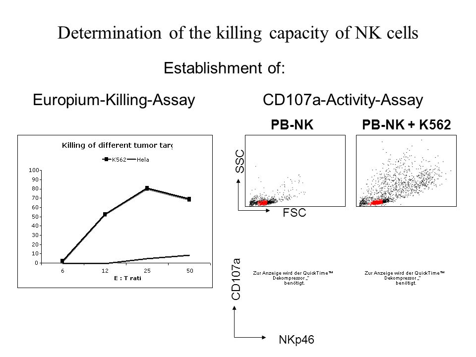 Introduction: Determination of NK cell Activity Target cell Eu- labeled NK Eu- labeled NK Coculture Europium-Release-Killing-Assay Adapted from: M Uhrberg, Leukemia (2005) Vol.19 Flow Cytometry: e.g.