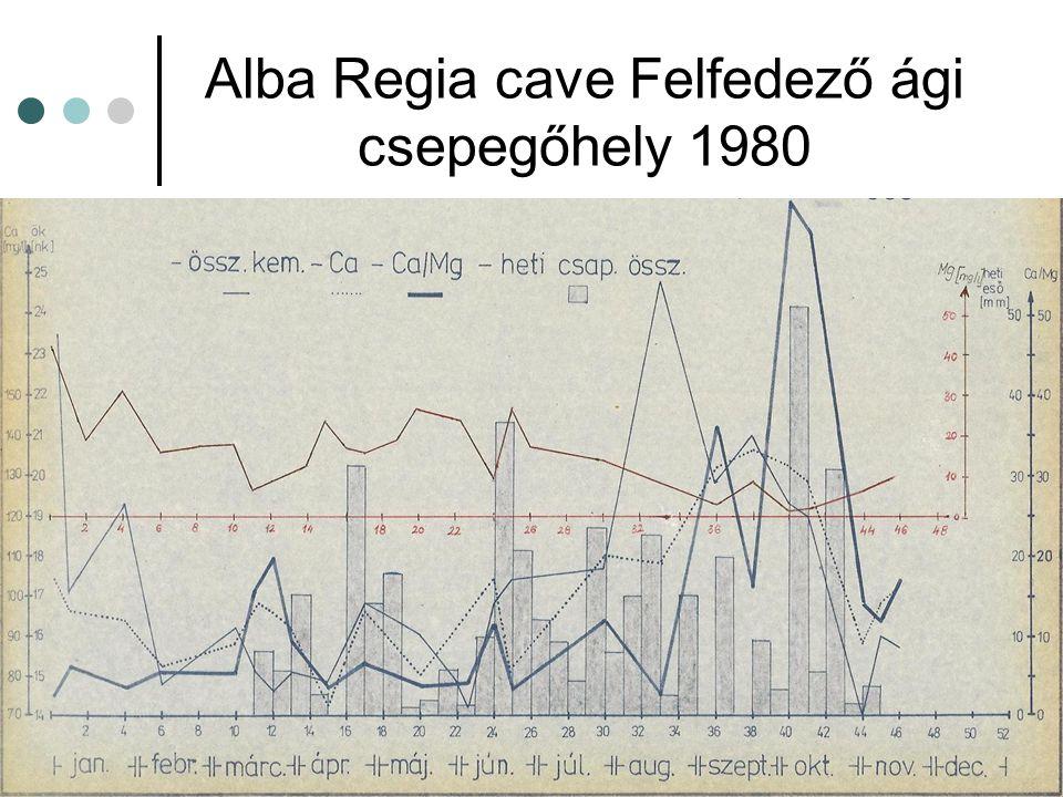 Alba Regia cave Felfedező ági csepegőhely 1980