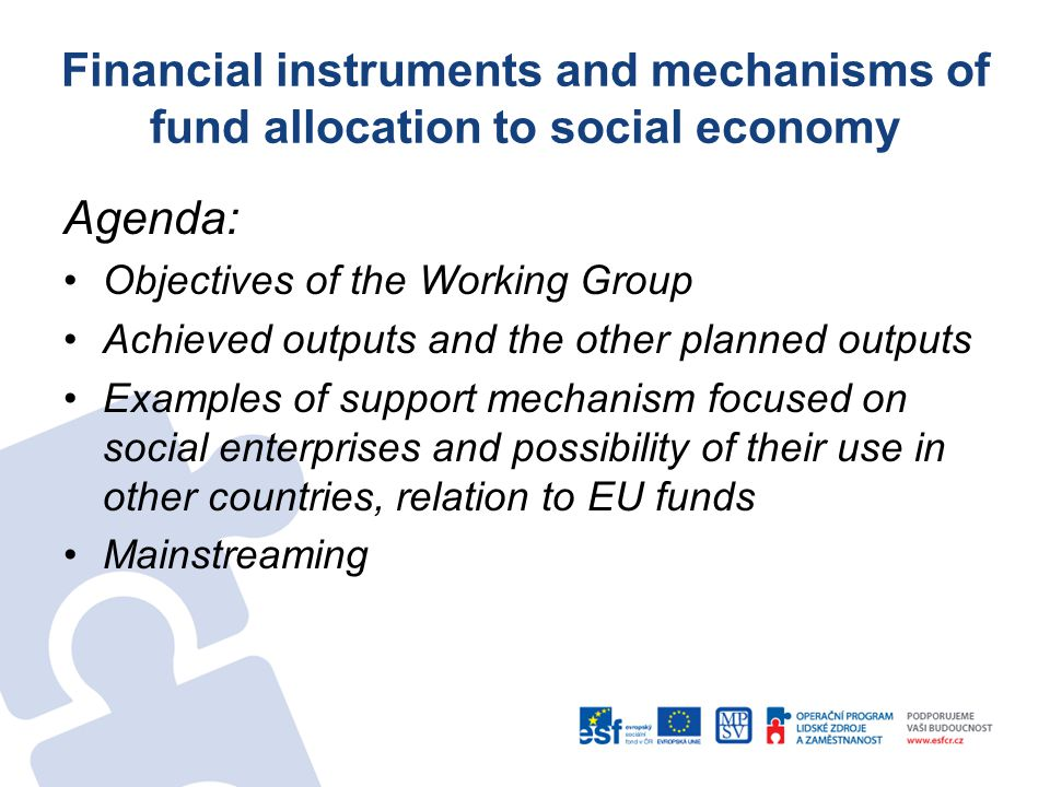 Financial instruments and mechanisms of fund allocation to social economy Agenda: Objectives of the Working Group Achieved outputs and the other planned outputs Examples of support mechanism focused on social enterprises and possibility of their use in other countries, relation to EU funds Mainstreaming