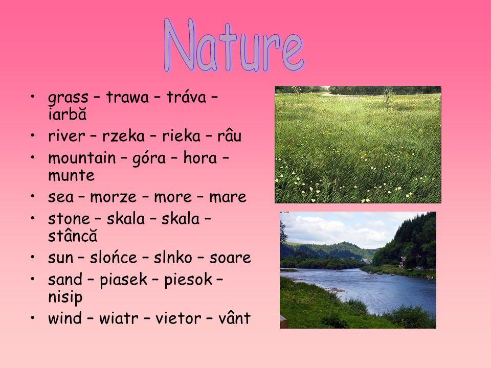 grass – trawa – tráva – iarbă river – rzeka – rieka – râu mountain – góra – hora – munte sea – morze – more – mare stone – skala – skala – stâncă sun
