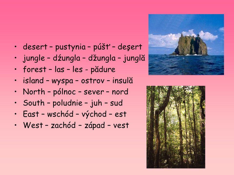 desert – pustynia – púšť – deşert jungle – dźungla – džungla – junglă forest – las – les - pădure island – wyspa – ostrov – insulă North – pólnoc – se