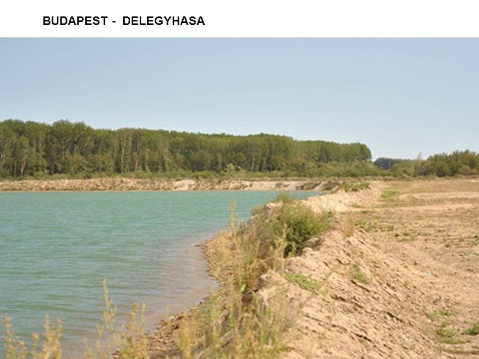 BUDAPEST - DELEGYHASA