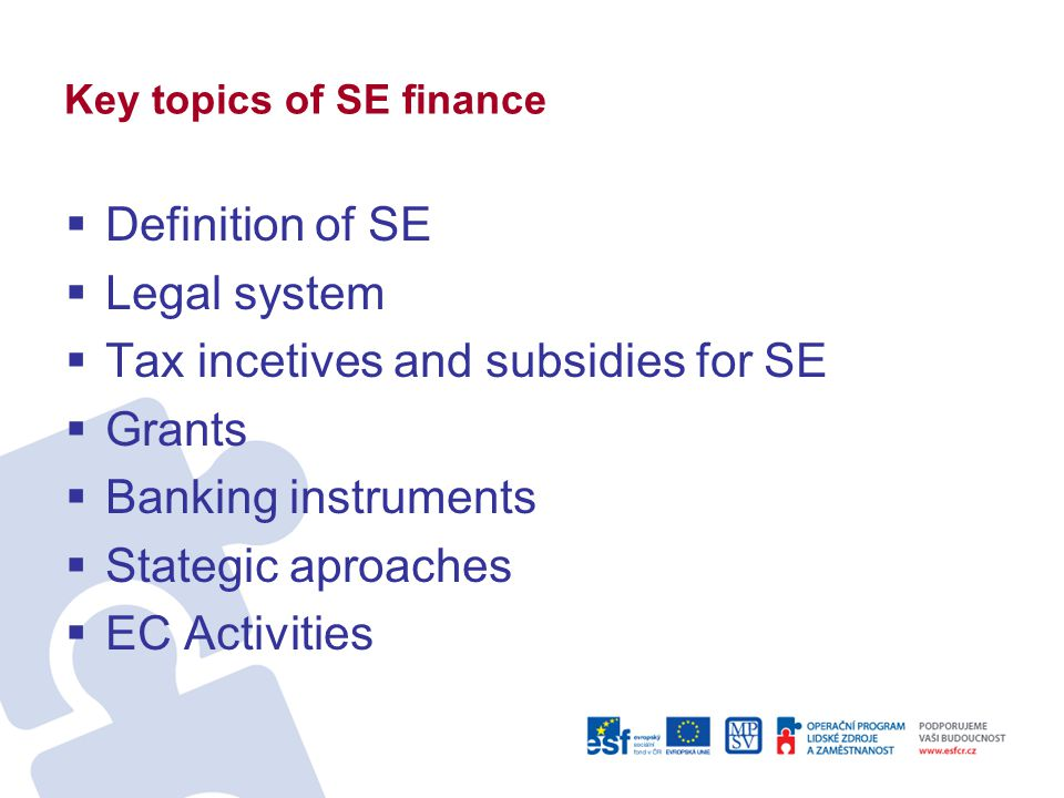 Key topics of SE finance  Definition of SE  Legal system  Tax incetives and subsidies for SE  Grants  Banking instruments  Stategic aproaches 