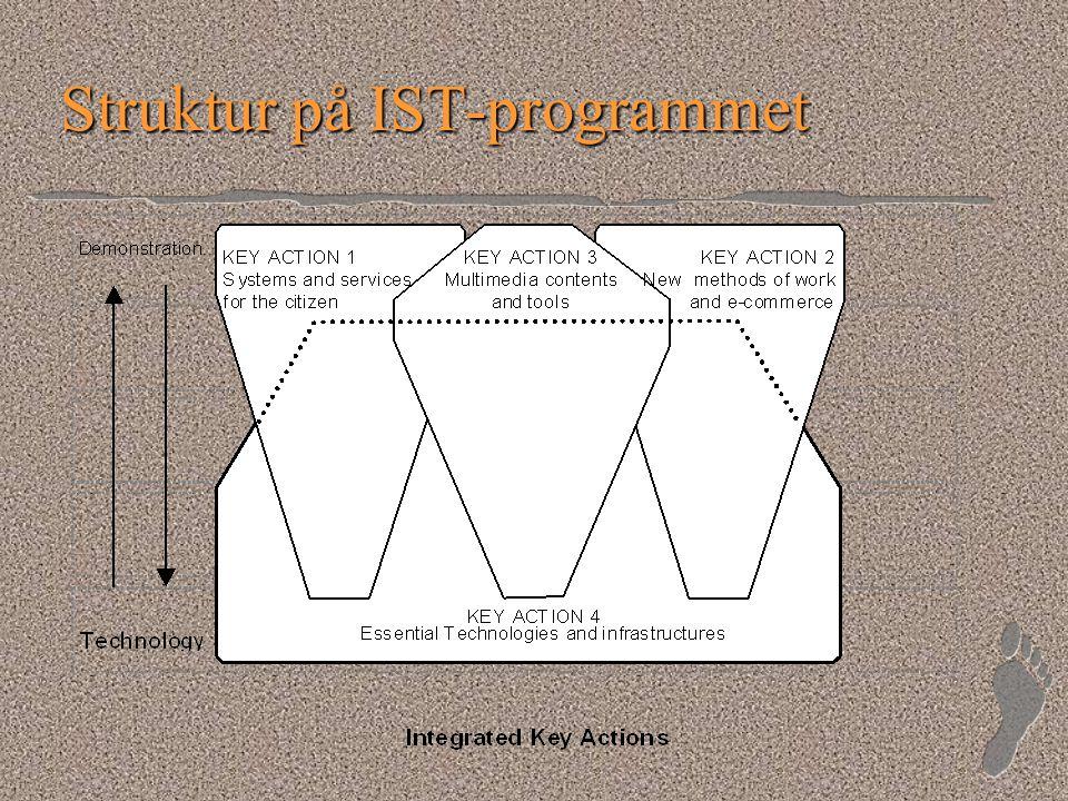Struktur på IST-programmet