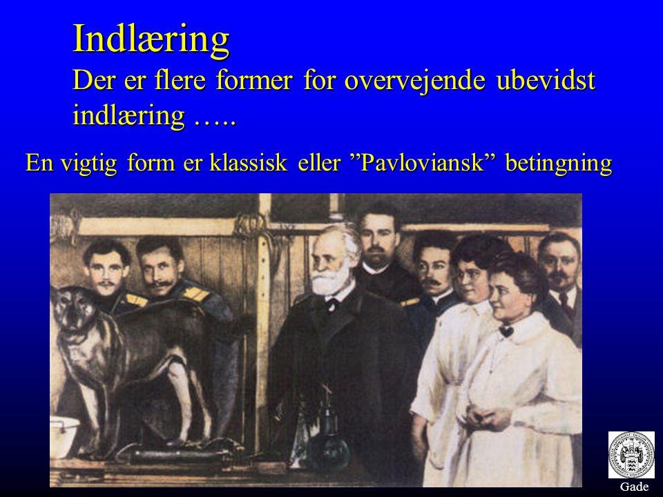 """Gade Indlæring Der er flere former for overvejende ubevidst indlæring ….. En vigtig form er klassisk eller """"Pavloviansk"""" betingning"""
