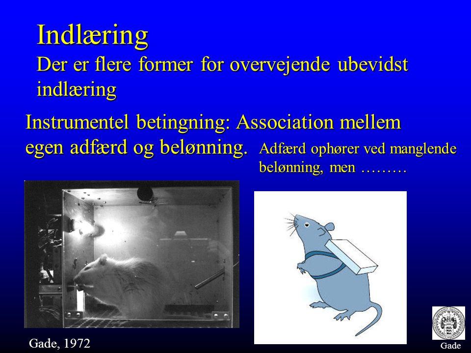 Gade Indlæring Der er flere former for overvejende ubevidst indlæring Instrumentel betingning: Association mellem egen adfærd og belønning. Gade, 1972