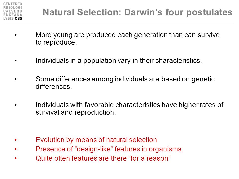 Natural Selection: Darwin's four postulates More young are produced each generation than can survive to reproduce.