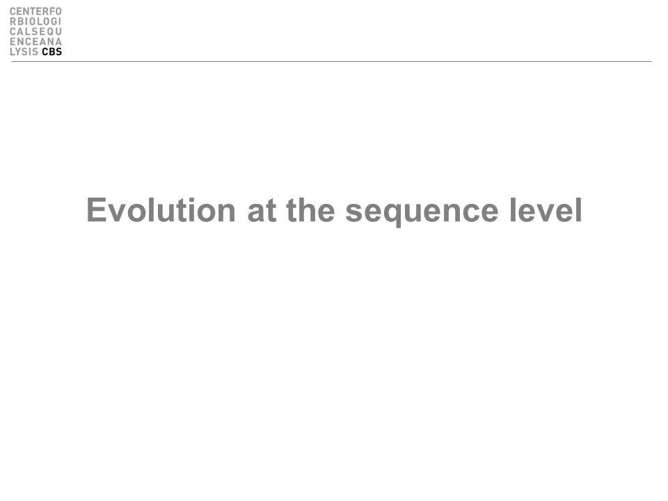 Evolution at the sequence level