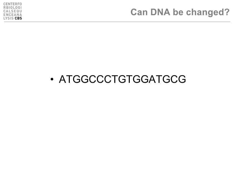 ATGGCCCTGTGGATGCG Can DNA be changed?