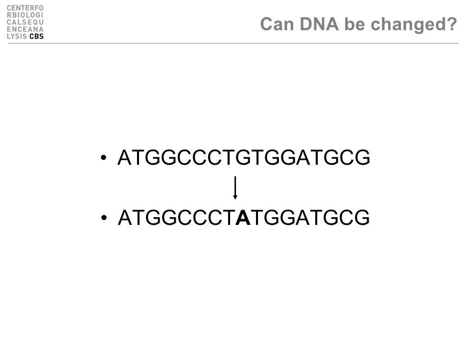 ATGGCCCTGTGGATGCG ATGGCCCTATGGATGCG Can DNA be changed