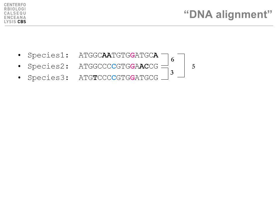 Species1: ATGGCAATGTGGATGCA Species2: ATGGCCCCGTGGAACCG Species3: ATGTCCCCGTGGATGCG DNA alignment 3 6 5